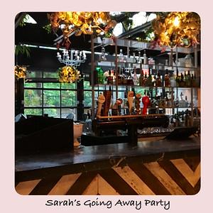 Sarah's Going Away Party