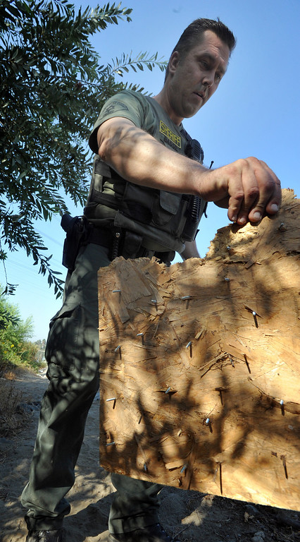 . A Los Angeles County Sheriff\'s Deputy finds a board with nails set as a booy trap as they search a homeless camp in the river bed area of the San Gabriel River near South El Monte on Thursday September 12, 2013. (Whittier Daily News/Staff Photo by Keith Durflinger)
