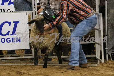 Mutton Bustin ... Fri Night 9-20