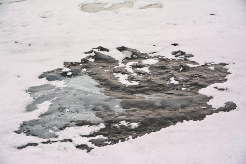 Bare Ice