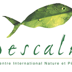 Pescalis-240x160.png