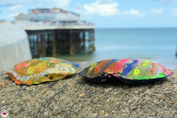 Paint a Crab Shell and Duck Race