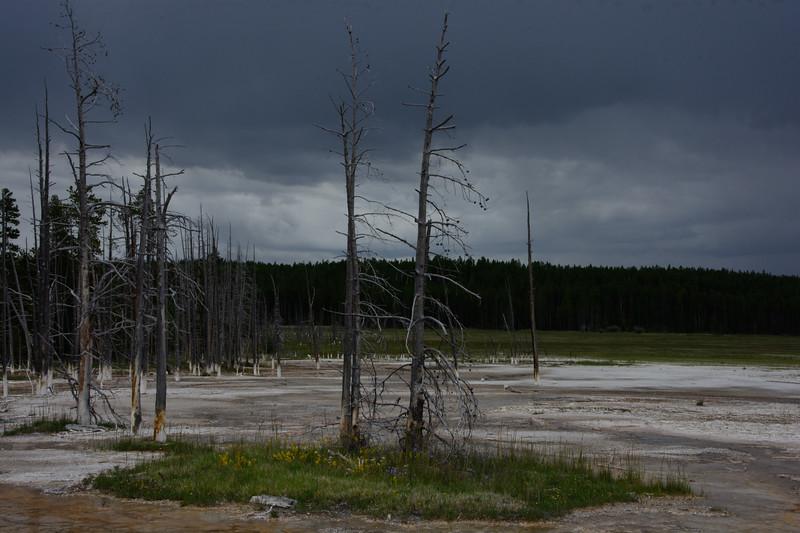 Yellowstone-504.jpg