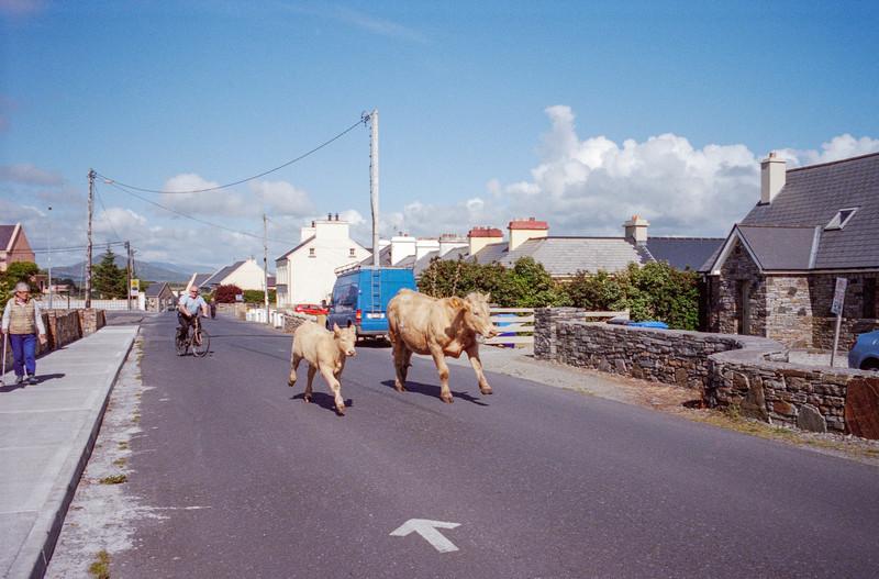 20150816-Ireland Summer 20150084.jpg