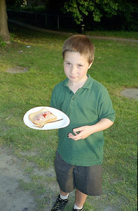 Cub Fires 2003