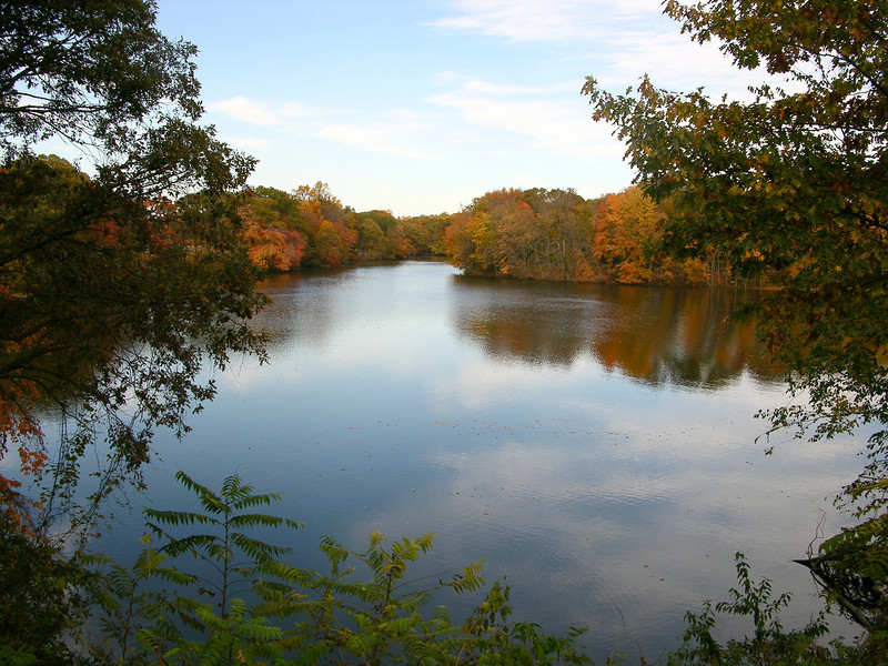 Wye Mill Pond in Talbot County