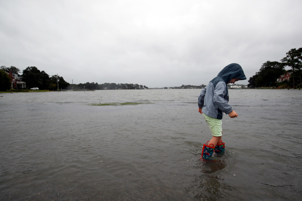 . Emmett Marshall, 4, from Norfolk, Va. wades in floodwaters, Friday, Sept. 14, 2018, in the Larchmont area of Norfolk, Va., as the effects of Hurricane Florence are felt. (AP Photo/Alex Brandon)