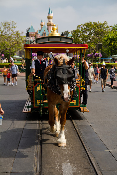 Horse-Drawn Trolley at Main Street USA in Disneyland