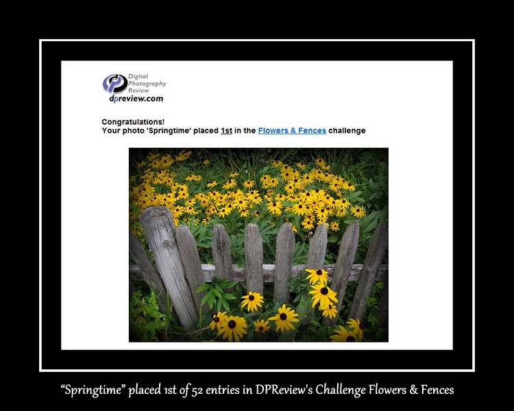 08-Flowers & Fences.jpg