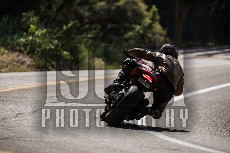20170514 Palomar Mountain c1 95.jpg
