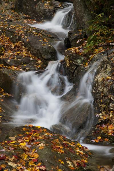 Vermont 2009 9