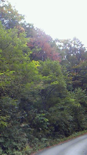 201010221003001