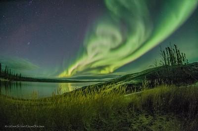 Arctic Eye~365