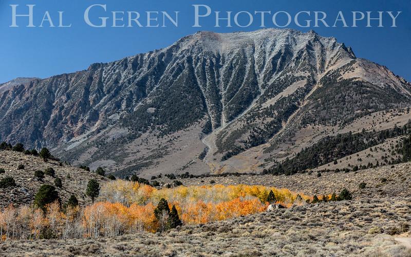 Eastern Sierra in October