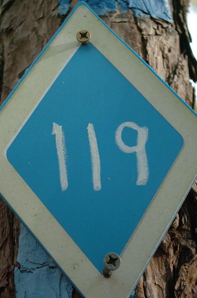 TM #119 - 3190m