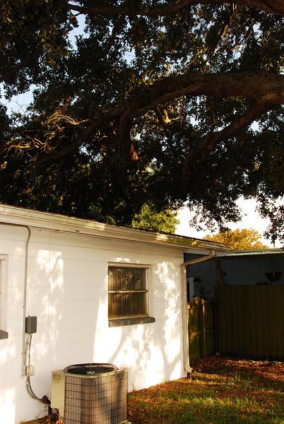 2008 09 24 - The House 051.JPG