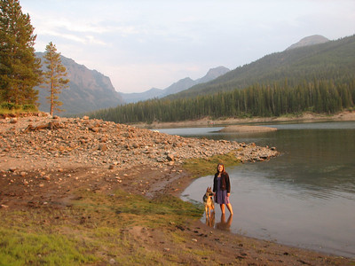 2013 Montana