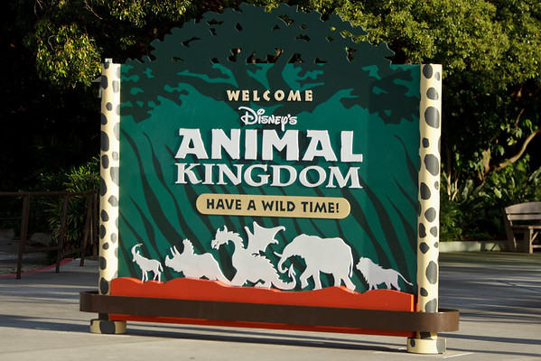 2009 - Day 1 - Animal Kingdom