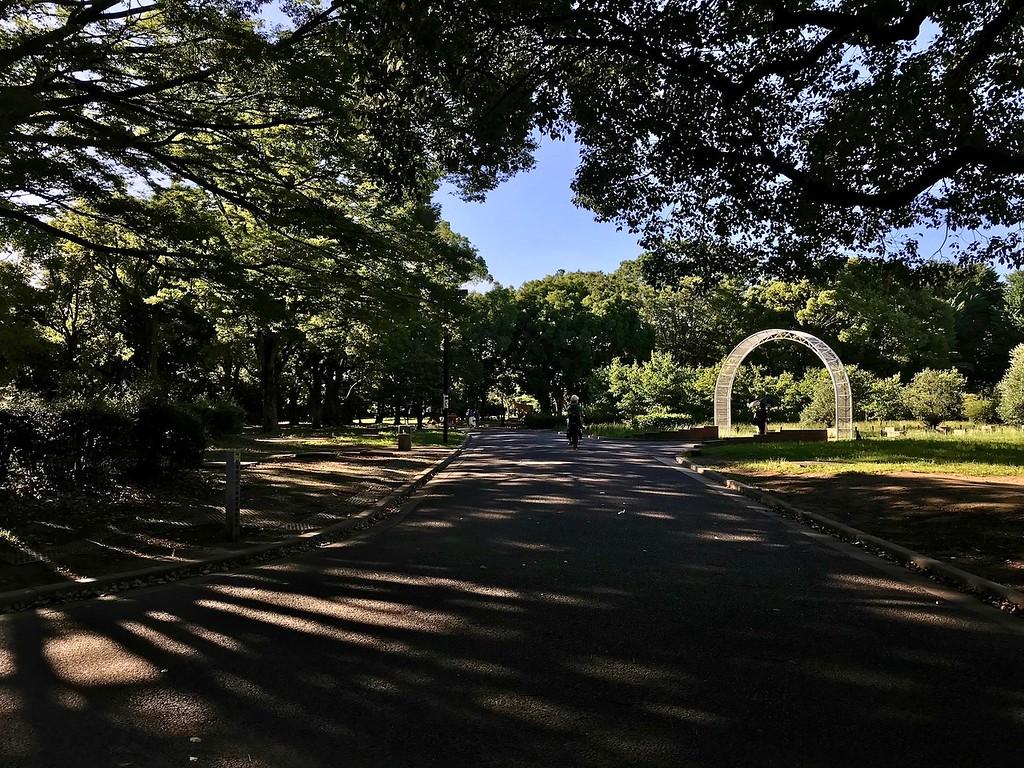 Yoyogi-koen Park