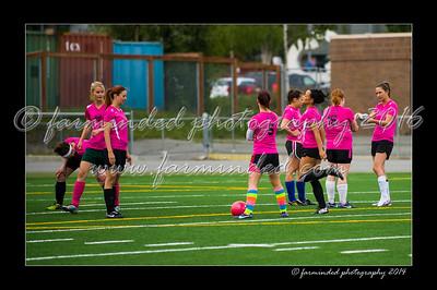 06/09/2014- Alaska Football Stadium -Ak Goal Diggers V.s. Polar Kicks