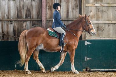 Dartmouth Equestrian Regional