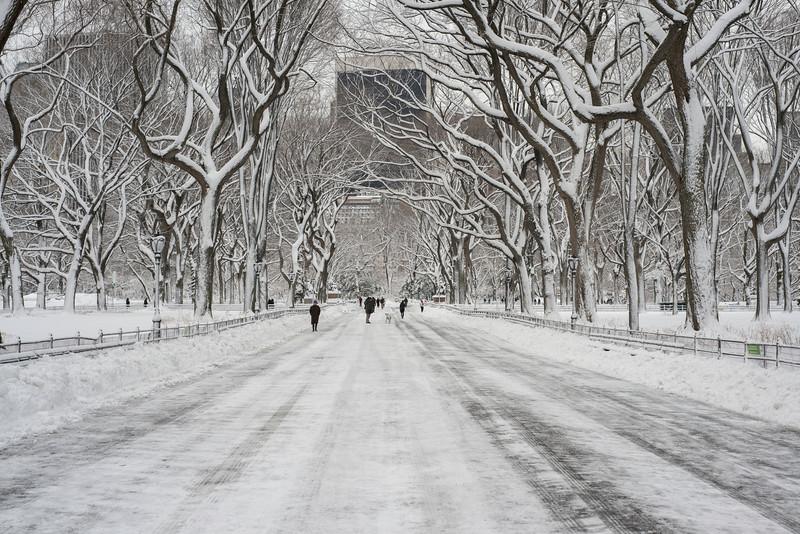 Central Park under white
