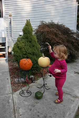 Gracie's Pumpkins