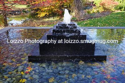 2017-10-25 Places - Olbrich Gardens