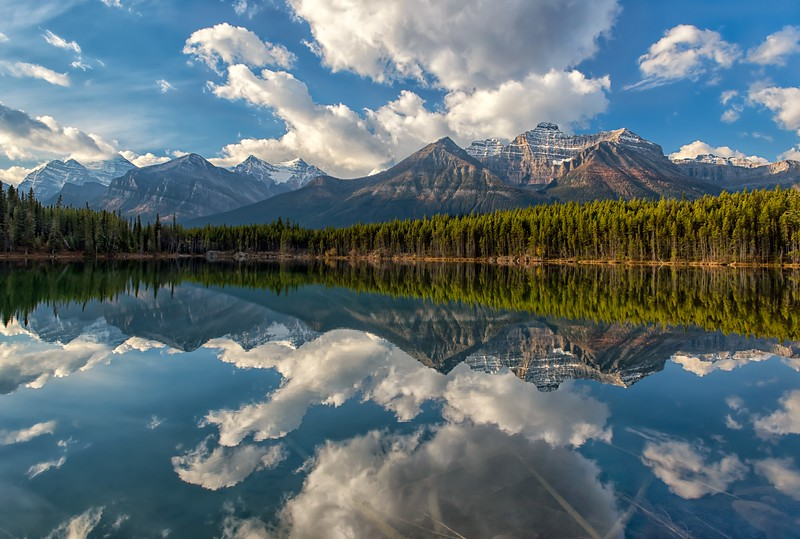 Herbert Lake Reflections