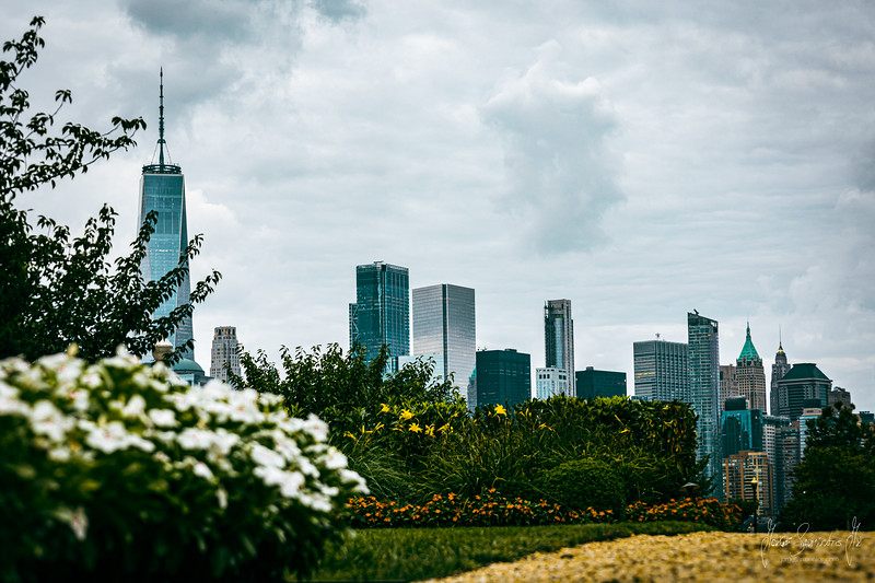 new-york-new-jersey-jorge-sarmiento-video-photography-nyc-flowers-1.jpg