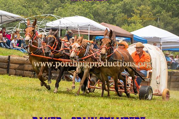 Saturday 4 up Mules