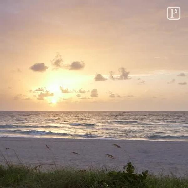 20160804_CLO_palm_beach_sunrise_IG_jrf.mp4