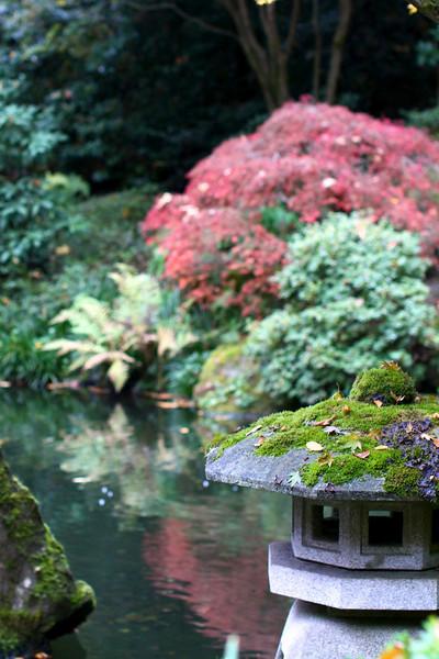 Portland Japanese Garden  11-11-11  3516.jpg