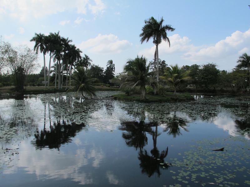 Cuba.  February 2012.