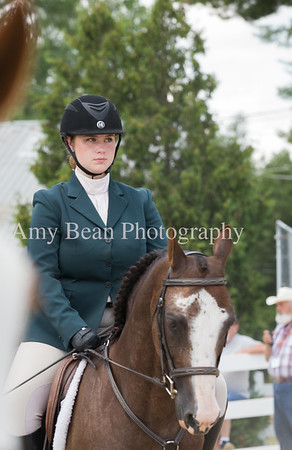 4H State Horse Show 2019