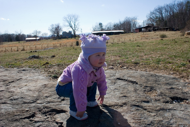 farm0306_05.jpg