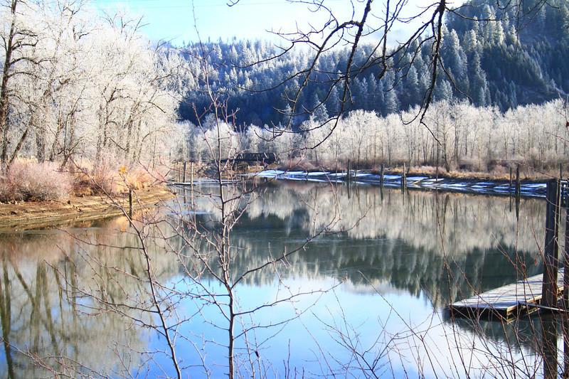 winter2019-1249.jpg