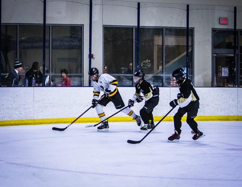Bruins-213.jpg