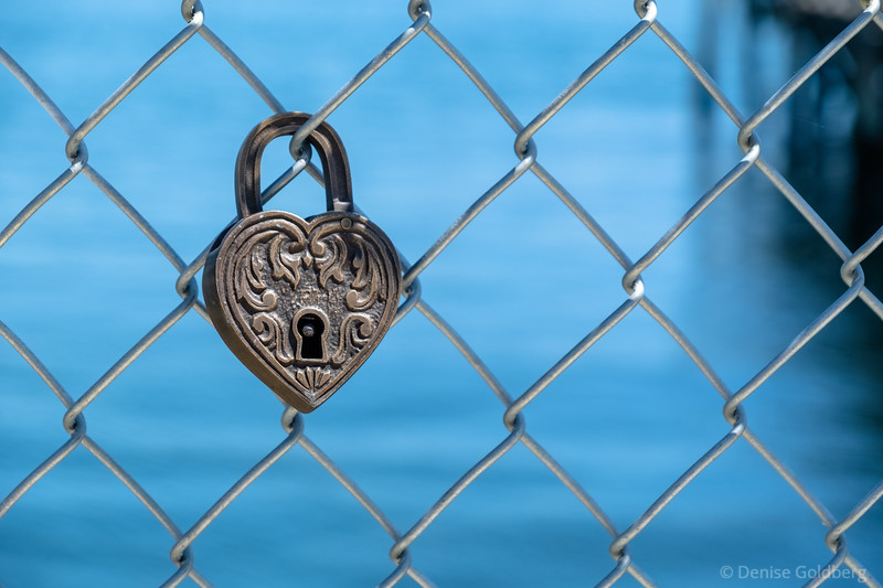 a lock on a fence in Portsmouth, NH