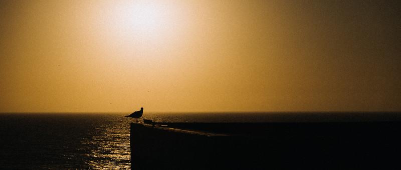 Morocco-5991.jpg