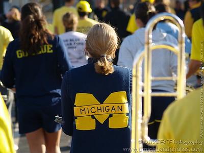 M v. Iowa (HC) - October 16, 2010