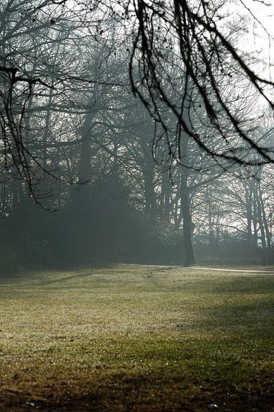 Landscape Netherlands