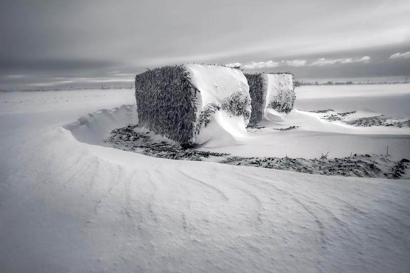 20190314KW-Windblown_Snow_Bales_Selenium.jpg