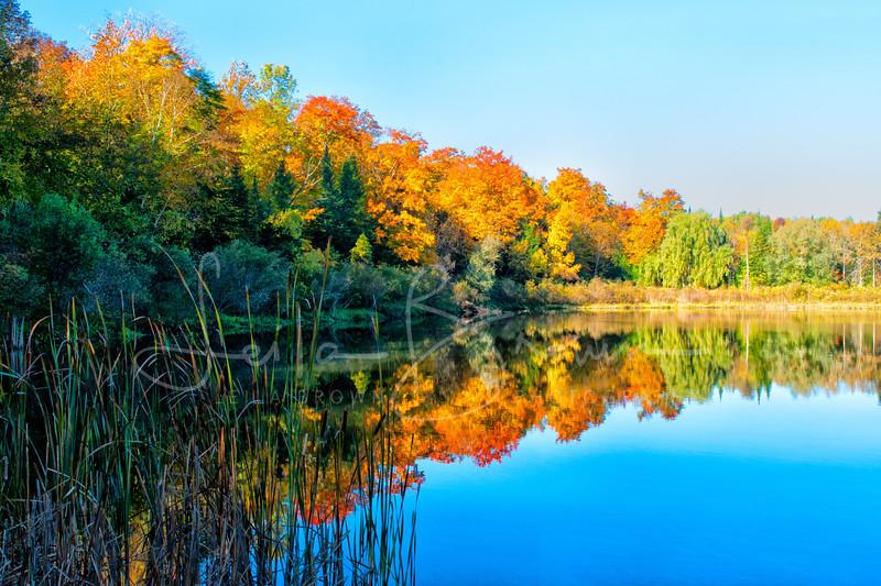 Monora Lake 2.jpg