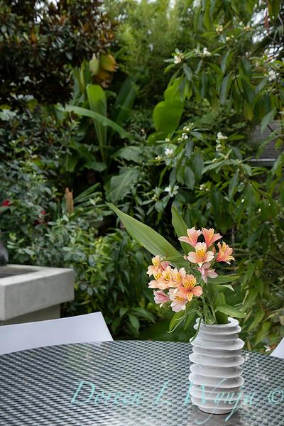 Lisa Bauer - designer's garden_1285.jpg