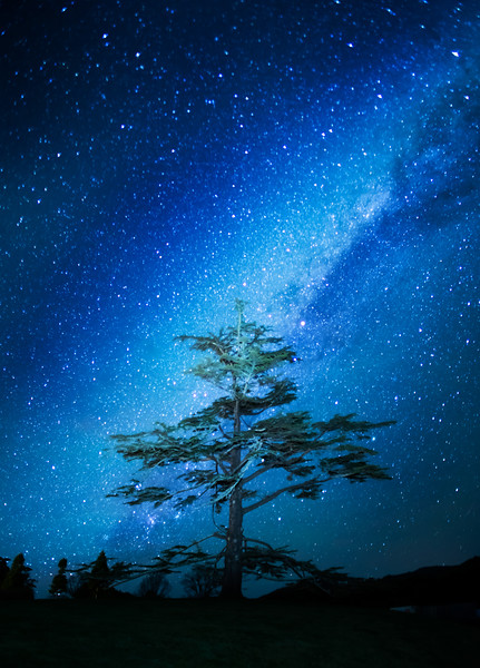 The Milky Way in Gisborne
