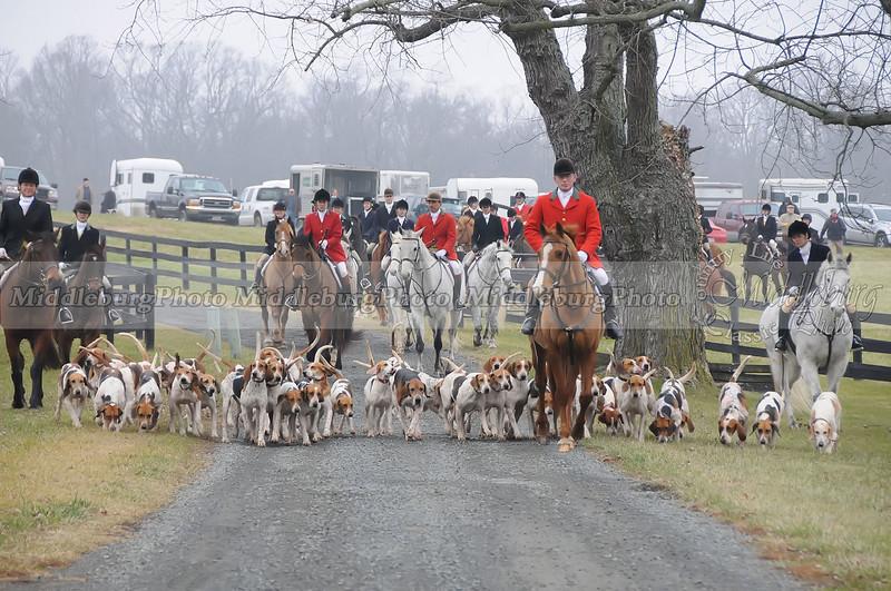Middleburg Hunt,2008