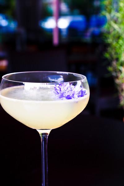 Terrac cocktail-2982.jpg