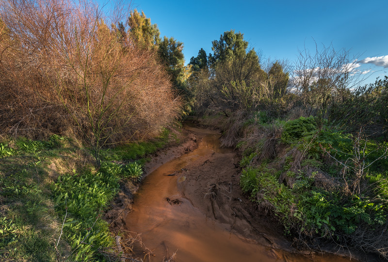 I-11 - Santa Cruz River #3