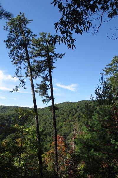 Chestnut Knob Trail - 1,900'